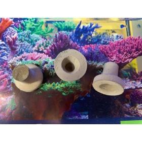 Reefplug Rund mit Loch